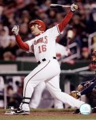 Paul Loduca LIMITED STOCK Washington Nationals 8X10 Photo