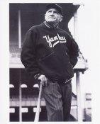 Casey Stengel New York Yankees 8X10 Photo