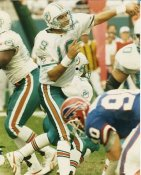Scott Mitchell G1 OUT OF PRINT Dolphins 8X10 Photo