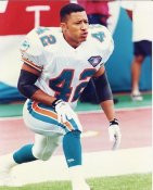 Chris Green G1 OUT OF PRINT Dolphins 8X10 Photo