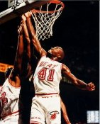 Glen Rice G1 OUT OF PRINT Heat 8X10 Photo
