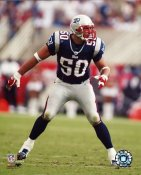 Mike Vrabel G1 OUT OF PRINT Patriots 8X10 Photo
