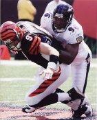 Adalius Thomas Baltimore Ravens 8X10 Photo