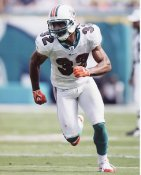 Jason Allen Miami Dolphins 8X10 Photo