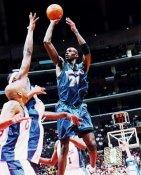 Kevin Garnett Minnesota Timberwolves 8X10 Photo LIMITED STOCK