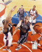 Jason Kidd New Jersey Nets 8X10 Photo