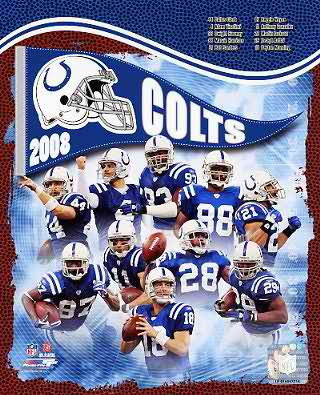 Colts 2008 Indianapolis Team 8X10 Photo