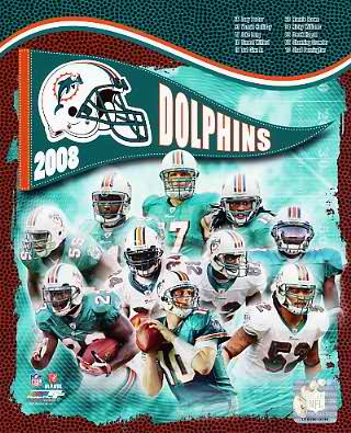 Dolphins 2008 Miami Team 8X10 Photo