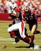 Anquan Boldin LIMITED STOCK Arizona Cardinals 8X10 Photo