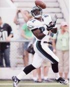 Jason Avant Philadelphia Eagles 8X10 Photo