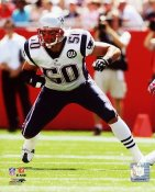 Mike Vrabel New England Patriots 8x10 Photo