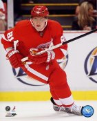 Marian Hossa Detroit Red Wings 8x10 Photo  LIMITED STOCK