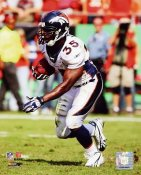 Selvin Young Denver Broncos 8X10 Photo