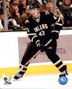 Philippe Boucher Dallas Stars 8x10 Photo