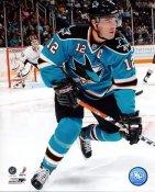 Patrick Marleau Jose Sharks 8x10 Photo