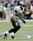 Sheldon Brown Philadelphia Eagles 8X10