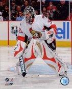 Martin Gerber Ottawa Senators 8x10 Photo