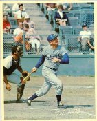 Tom Hall Original Stadium Souvenir With Stamped Signature Dodgers 8X10 Photo