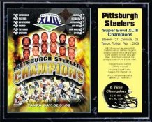 Steelers 2009 Super Bowl 43 Champions 12x15 Black Marble Style Team Plaque