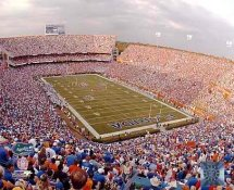 N2 Ben Hill Griffin Stadium The Swamp Florida Gators LIMITED STOCK 8X10 Photo