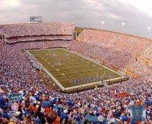 N2 Ben Hill Griffin Stadium The Swamp Florida Gators SATIN 8X10 Photo