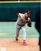 Todd Stottlemyer G1 Limited Stock Rare Cardinals 8X10 Photo
