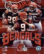 Carson Palmer, Peter Warrick, Cory Dillon Big 3 Cincinnati Bengals 8X10 Photo