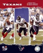 Andre Johnson, David Carr, Mario Williams Big 3 Houston Texans LIMITED STOCK 8X10 Photo