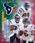 Andre Johnson, David Carr, Domanick Davis Big 3 Houston Texans LIMITED STOCK 8X10 Photo