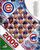 Cubs 2009 Chicago Team Composite 8X10 Photo