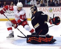 Daniel Cleary Red Wings G2 LIMITED STOCK RARE 8X10 Photo