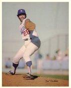 Mike Marshall Original Stadium Souvenir With Stamped Signature Dodgers 8X10 Photo