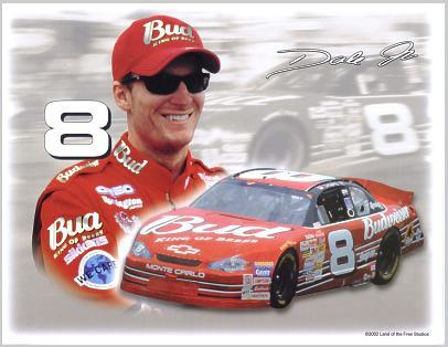 Dale Earnhardt Jr. 8.5x11 Photo SUPER SALE!