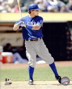 Ian Kinsler LIMITED STOCK Texas Rangers 8X10 Photo