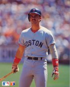 Mike Greenwell LIMITED STOCK Boston Red Sox Glossy Card Stock 8x10 Photo
