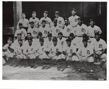 Detroit Tigers 1934 American League Pennant G1 Limited Stock Rare Tigers 8X10 Photo