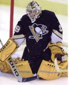 Marc-Andre Fleury Pittsburgh Penguins 8x10 Photo