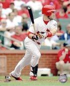 Skip Schumaker St. Louis Cardinals 8x10 Photo  LIMITED STOCK