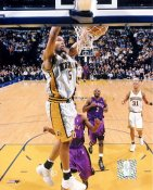 Ron Mercer Indiana Pacers 8x10 Photo