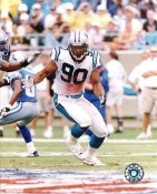 Julius Peppers G1 Limited Stock Rare Panthers 8X10 Photo