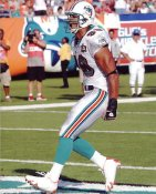 Jason Taylor G1 Limited Stock Rare Dolphins 8X10 Photo