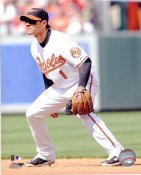 Brian Roberts Baltimore Orioles LIMITED STOCK 8X10 Photo