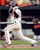 Brian Roberts LIMITED STOCK Baltimore Orioles 8X10 Photo