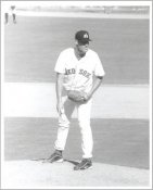 Bryan Hobson G1 Limited Stock Rare Boston Red Sox 8X10 Photo