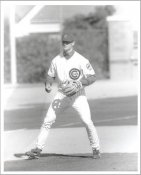 David Kelton G1 Limited Stock Rare Chicago Cubs 8X10 Photo
