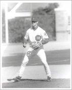David Kelton G1 Limited Stock Rare Chicago Cubs 8X10 Photo