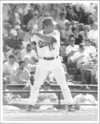 Paul LoDuca G1 Limited Stock Rare LA Dodgers 8X10 Photo