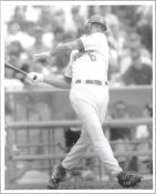 Shawn Green G1 Limited Stock Rare LA Dodgers 8X10 Photo