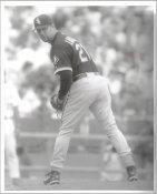 Esteban Loiza G1 Limited Stock Rare White Sox 8X10 Photo
