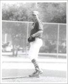 Rhet Parret G1 Limited Stock Rare Cardinals 8X10 Photo
